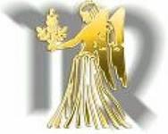 Знак зодиака Дева: любимая работа и большие деньги.